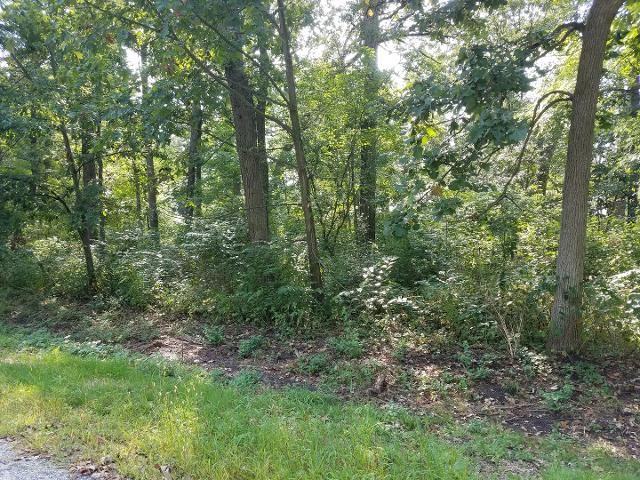 Lot 3 Hickory, Sycamore, 60178, IL - Photo 1 of 7