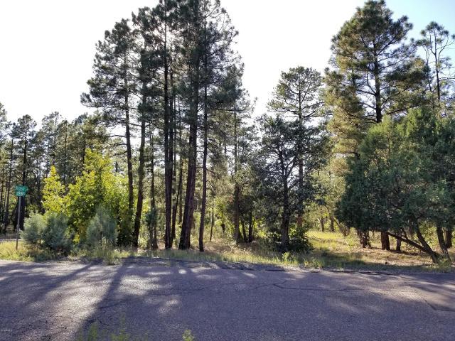 868 Little Bear Loop, Lakeside, 85929, AZ - Photo 1 of 7
