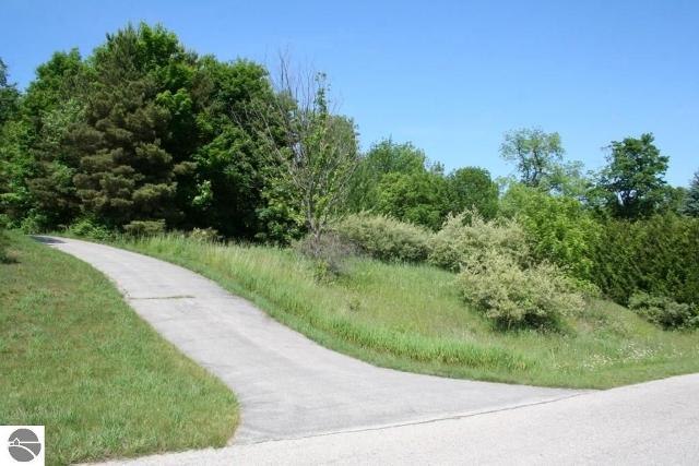 100 W Terrace Lane Cmns, Leland, 49654, MI - Photo 1 of 6