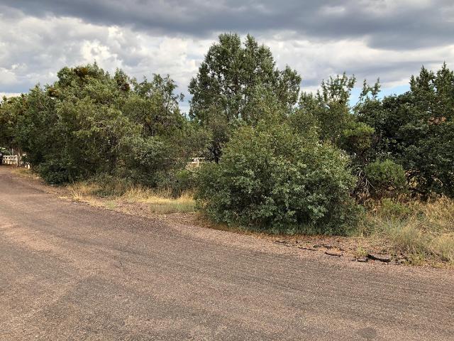 212 Mesa Vista, Payson, 85541, AZ - Photo 1 of 3