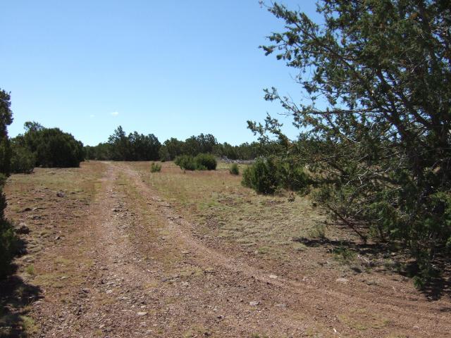 8413 N Apache County Rd, Vernon, 85940, AZ - Photo 1 of 14