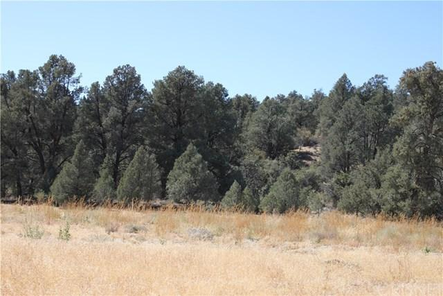 13224 Boy Scout Camp Rd, Frazier Park, 93225, CA - Photo 1 of 13
