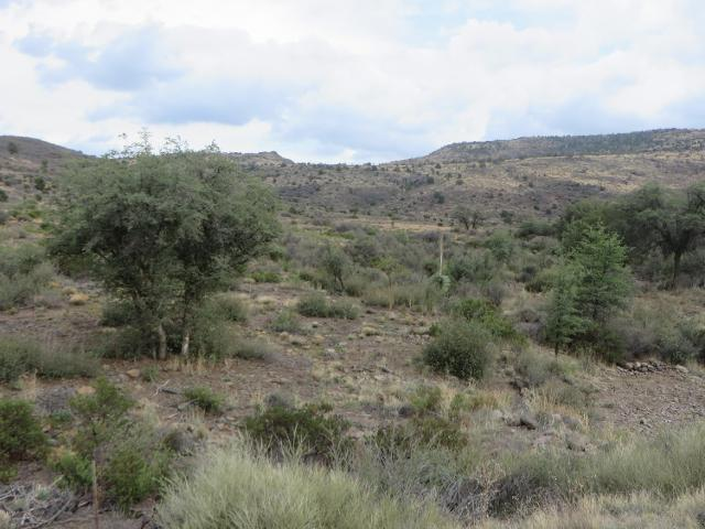 21755 S State Route 89, Yarnell, 85362, AZ - Photo 1 of 9