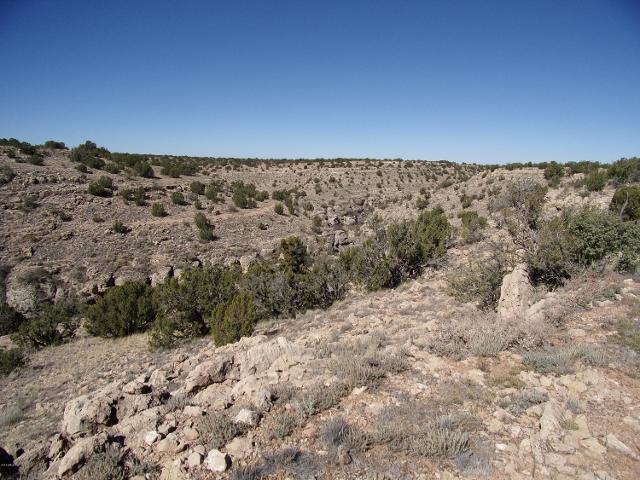 1857 N Vista Point Dr, Heber, 85928, AZ - Photo 1 of 36