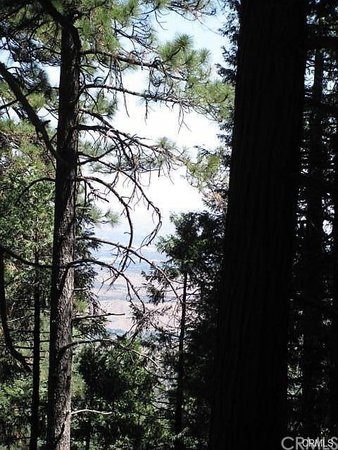 0 Cedar Pines Dr, Cedarpines Park, 92322, CA - Photo 1 of 11