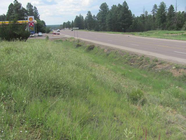 1957 Highway 260, Heber, 85928, AZ - Photo 1 of 4