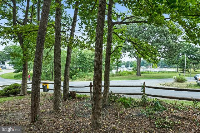 Webster, Edgewater, 21037, MD - Photo 1 of 12