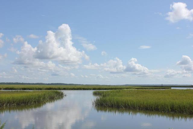 7688 Russell Creek, Edisto Island, 29438, SC - Photo 1 of 12