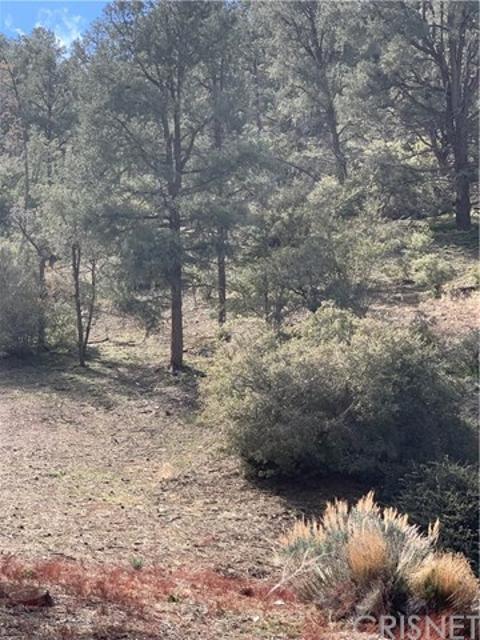 2123 Symonds, Pine Mtn Club, 93222, CA - Photo 1 of 1