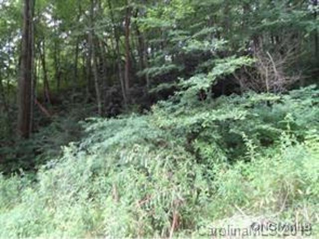LOT 39 Coyote Hollow Rd, Waynesville, 28785, NC - Photo 1 of 4