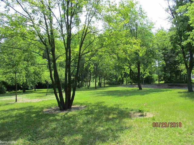 3838 Conifer, Burtchville, 48059, MI - Photo 1 of 1