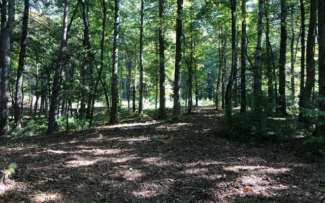 LOT 9 Fox, Blairsville, 30512, GA - Photo 1 of 6