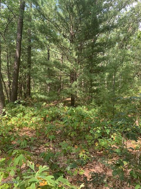Cedar Hills, Twin Lake, 49457, MI - Photo 1 of 3
