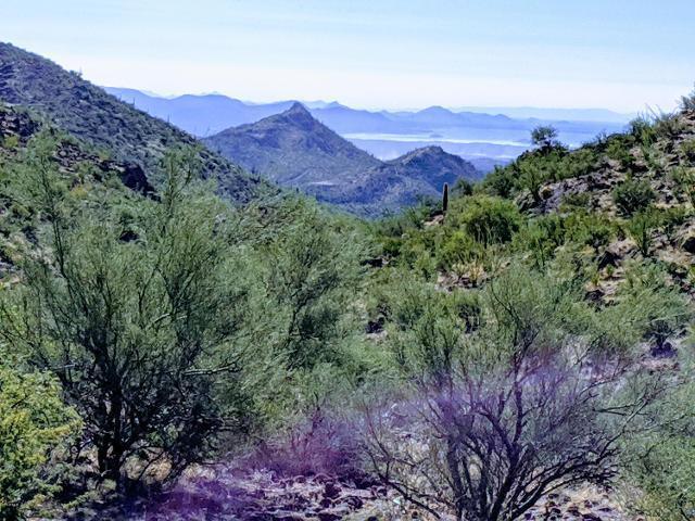 35150 S V X Ranch Rd, Morristown, 85342, AZ - Photo 1 of 26