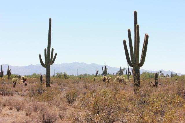 37500 239th Ave, Morristown, 85342, AZ - Photo 1 of 7