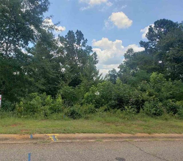 0 Oak, Hawkinsville, 31036, GA - Photo 1 of 1