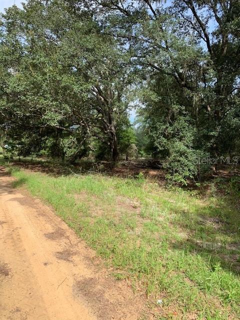 102 Cottonwood, Hawthorne, 32640, FL - Photo 1 of 2