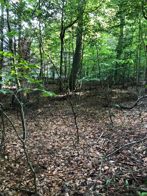 4714 Forest Ridge, Holland, 49423, MI - Photo 1 of 6