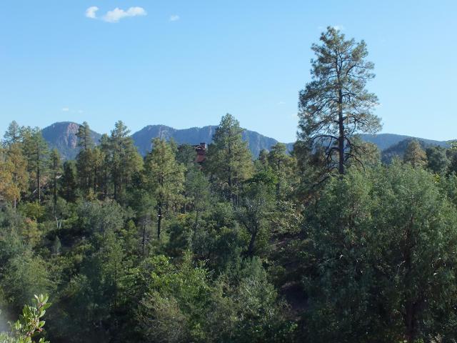 3102 E Monument Peak, Payson, 85541, AZ - Photo 1 of 32