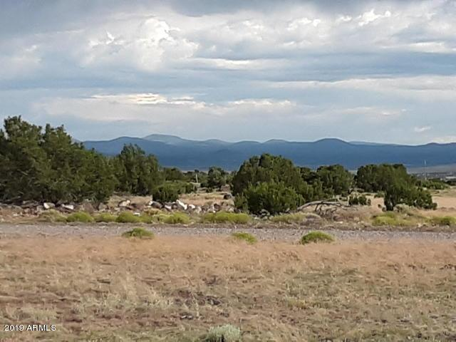 Lot 112 Windsor Valley Rnch, Concho, 85924, AZ - Photo 1 of 27
