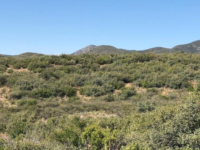 10424 E Prescott Dells Rd, Dewey, 86327, AZ - Photo 1 of 6