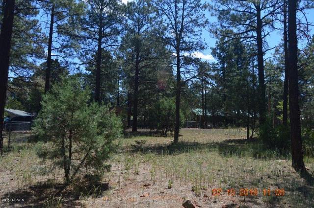 2892 Center Rd, Overgaard, 85933, AZ - Photo 1 of 6