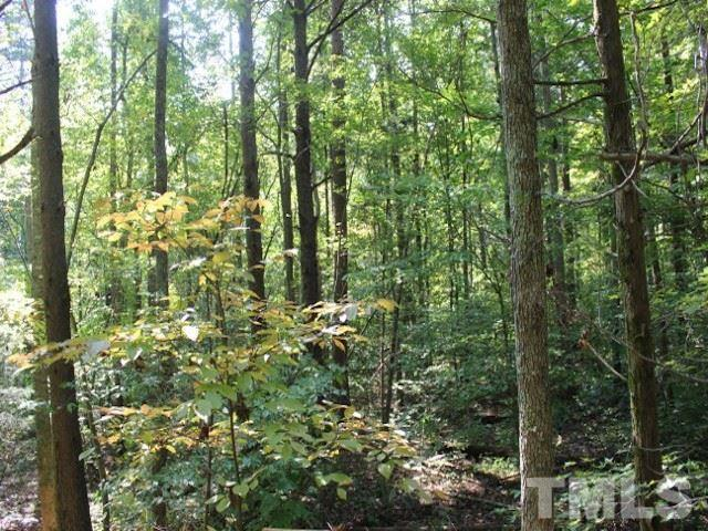 Lot 6 Preservation Forest Ln, Efland, 27243, NC - Photo 1 of 3