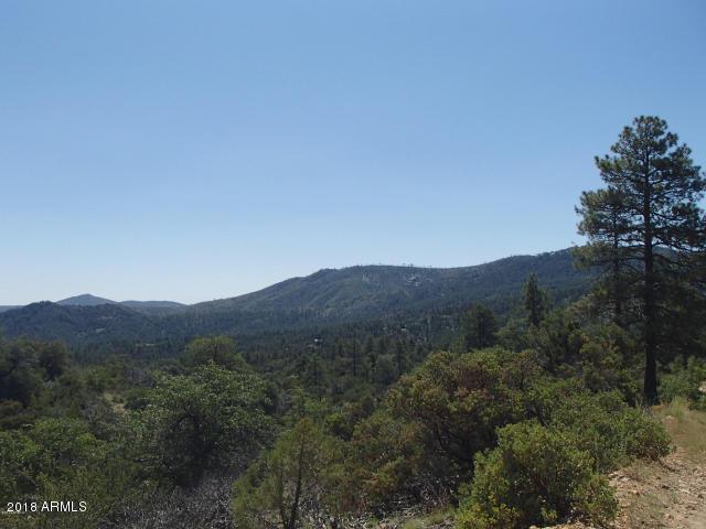 22650 S Towers Mountain Rd, Crown King, 86343, AZ - Photo 1 of 20