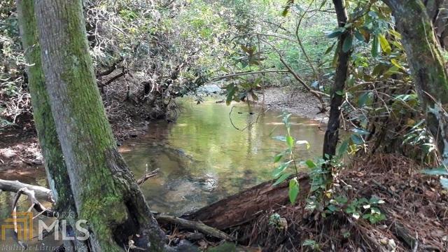 0 Bear Creek, Ellijay, 30536, GA - Photo 1 of 6
