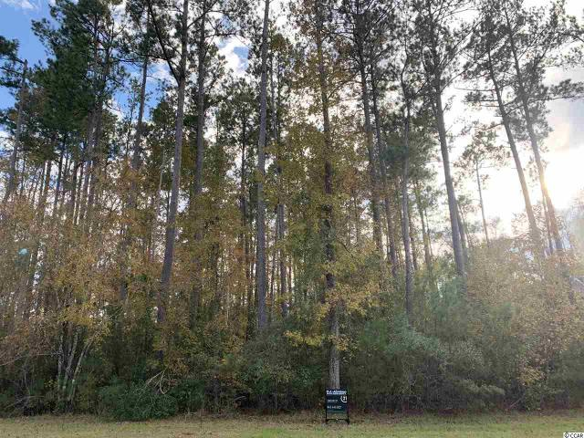 Lot 161 Trestle Way, Conway, 29526, SC - Photo 1 of 6