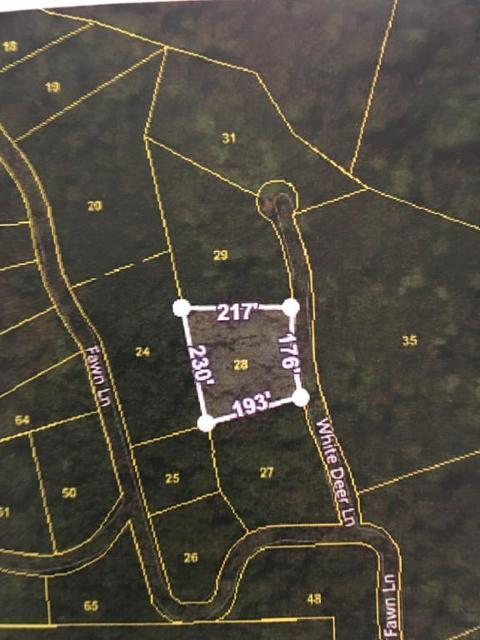 TBD White Deer UnitLot 28, Unicoi, 37692, TN - Photo 1 of 1