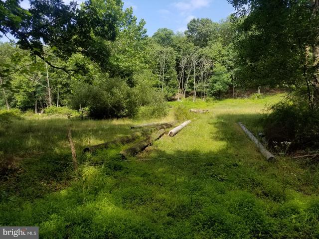 Warrior Mountain Rd, Oldtown, 21555, MD - Photo 1 of 1