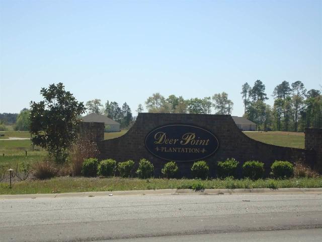 Lot 59 Deer Pt, Hawkinsville, 31036, GA - Photo 1 of 8