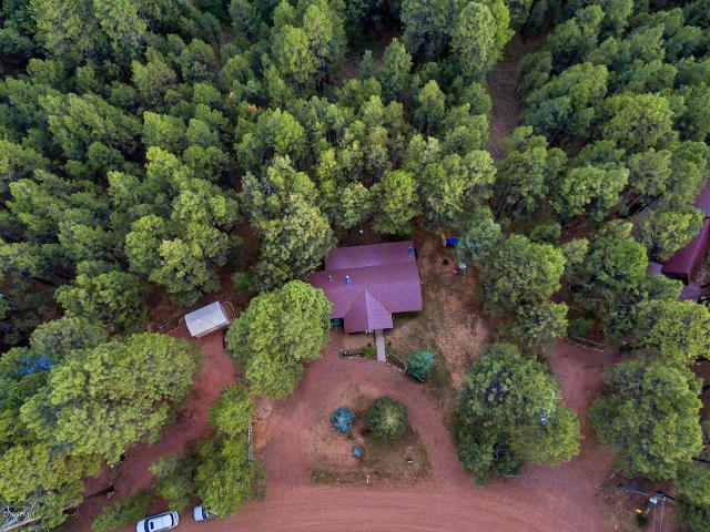 2398 Daisy Trl, Forest Lakes, 85931, AZ - Photo 1 of 23