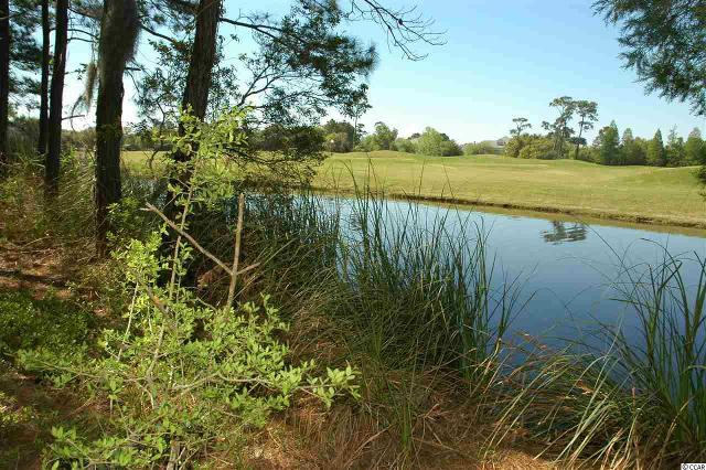 Lot 7 Collins Meadow Dr. Dr, Georgetown, 29440, SC - Photo 1 of 25