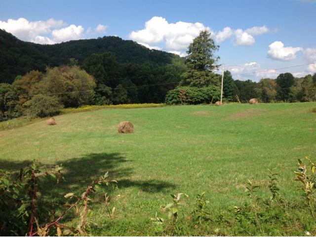 Lot 2 Dyer, Roan Mountain, 37687, TN - Photo 1 of 1