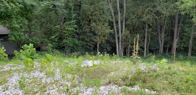 285 Mccoy, Worthington, 43085, OH - Photo 1 of 2