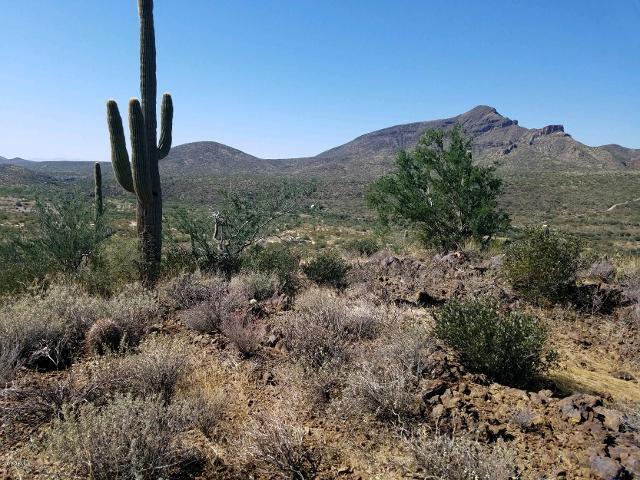00 N Spur Cross Rd, Cave Creek, 85331, AZ - Photo 1 of 16