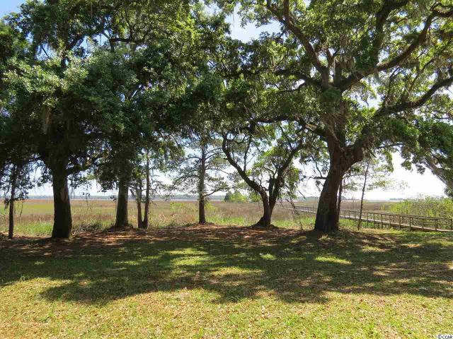 Lot 5 Whitehall Ave. Ave, Georgetown, 29440, SC - Photo 1 of 19