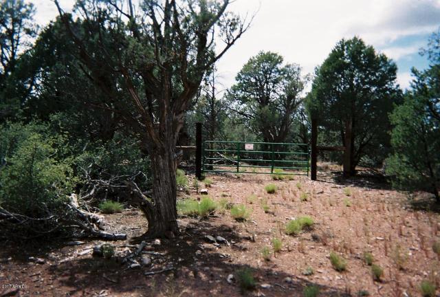 0 Juniperwood Rnch, Ash Fork, 86320, AZ - Photo 1 of 10