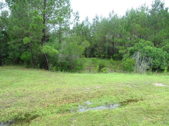 7R Lake Deborah, Folkston, 31537, GA - Photo 1 of 17