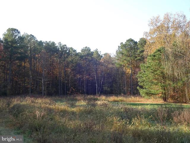 LOT78BRANNOCKSWOODS Canvasback Dr, Cambridge, 21613, MD - Photo 1 of 5