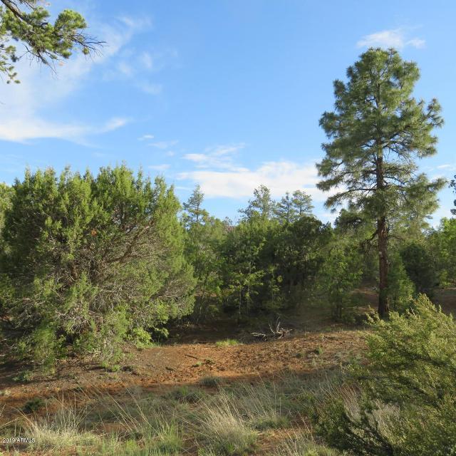 361 W Sierra Pines Dr, Show Low, 85901, AZ - Photo 1 of 26