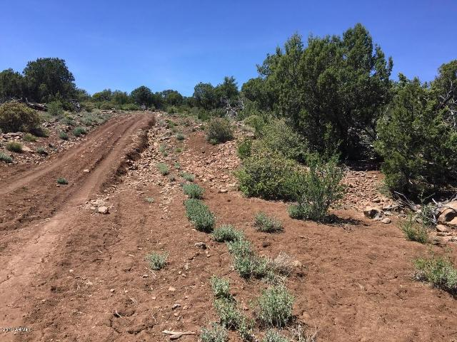 Lot 970 Elk Run Rd, Seligman, 86337, AZ - Photo 1 of 6