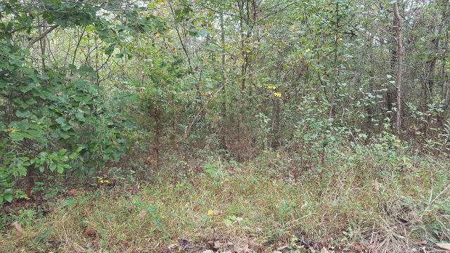 291 Davy Crockett Rd, Limestone, 37681, TN - Photo 1 of 1