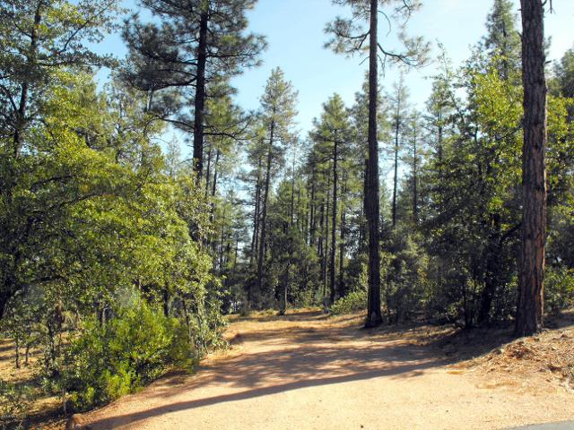 Lot 47 Forest Trl, Pine, 85544, AZ - Photo 1 of 12