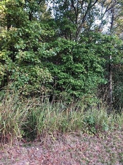 000 Rocky River Rd, Oakboro, 28129, NC - Photo 1 of 3