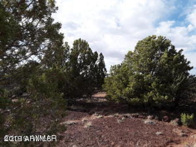 Lot 140 Show Low Pnes Unit 9, Concho, 85924, AZ - Photo 1 of 16