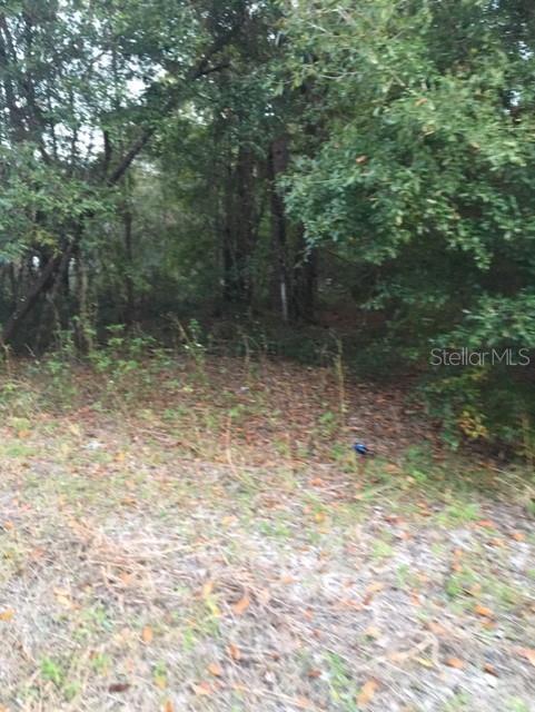 NE 67th Ln, Bronson, 32621, FL - Photo 1 of 2