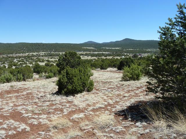 0 E County Rd 3144 (Ad) Rd, Vernon, 85940, AZ - Photo 1 of 8